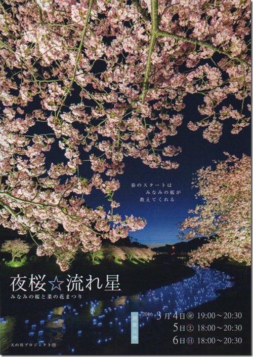 夜桜☆流れ星