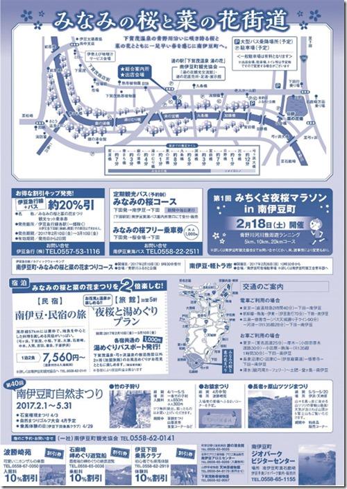 第19回桜ウラ(1)